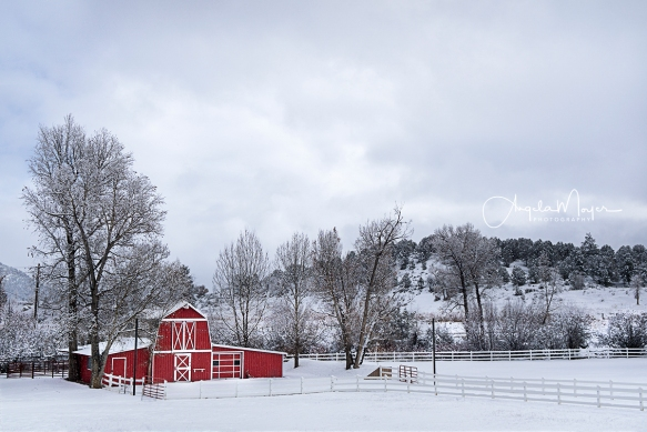 CR 24 Red Barn_DSC0166_WEB